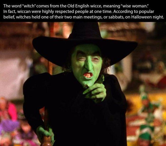 26 Halloween Facts - Gallery | eBaum's World