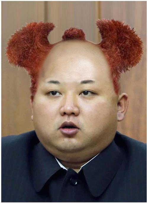 kim jong un hair collection   gallery ebaum s world