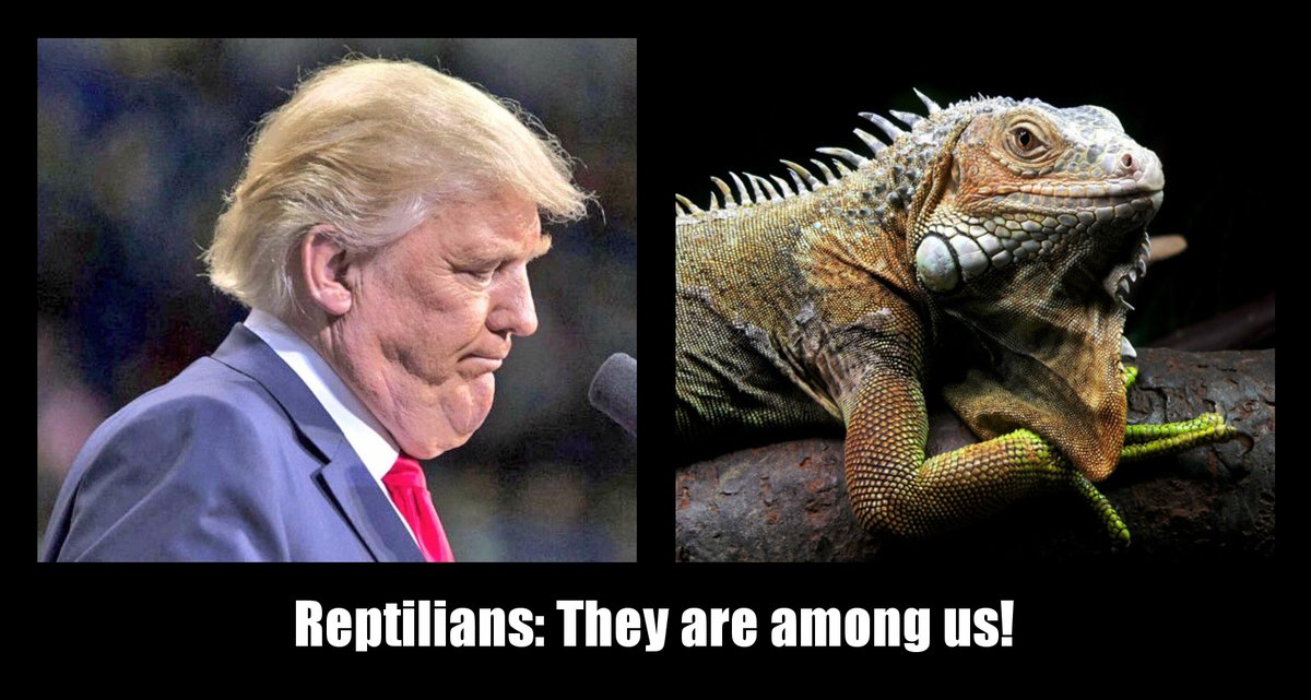 Image result for trump lizard man