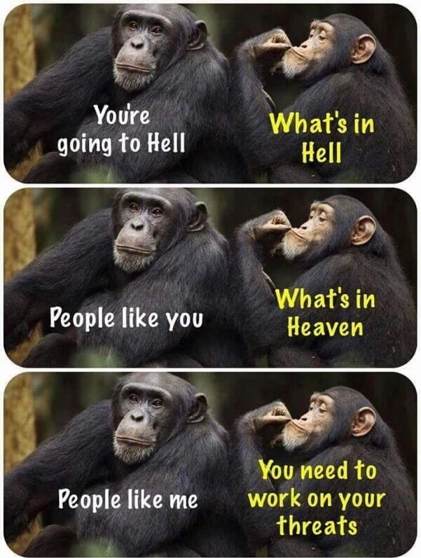 40 - Chimp meme about heaven and hell