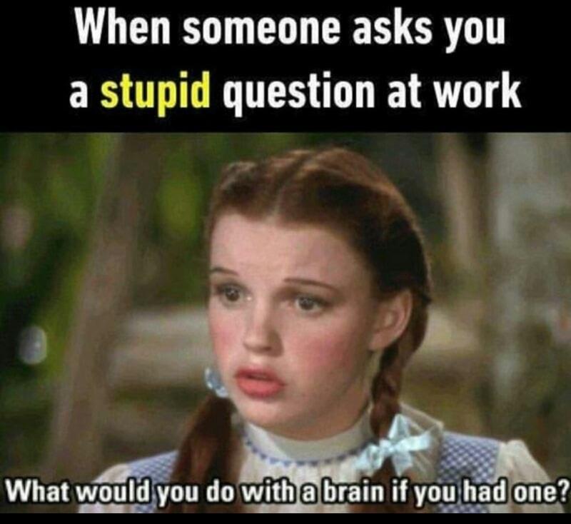 55 Hilarious Memes Guaranteed To Make You Laugh - Funny ... Funny Memes