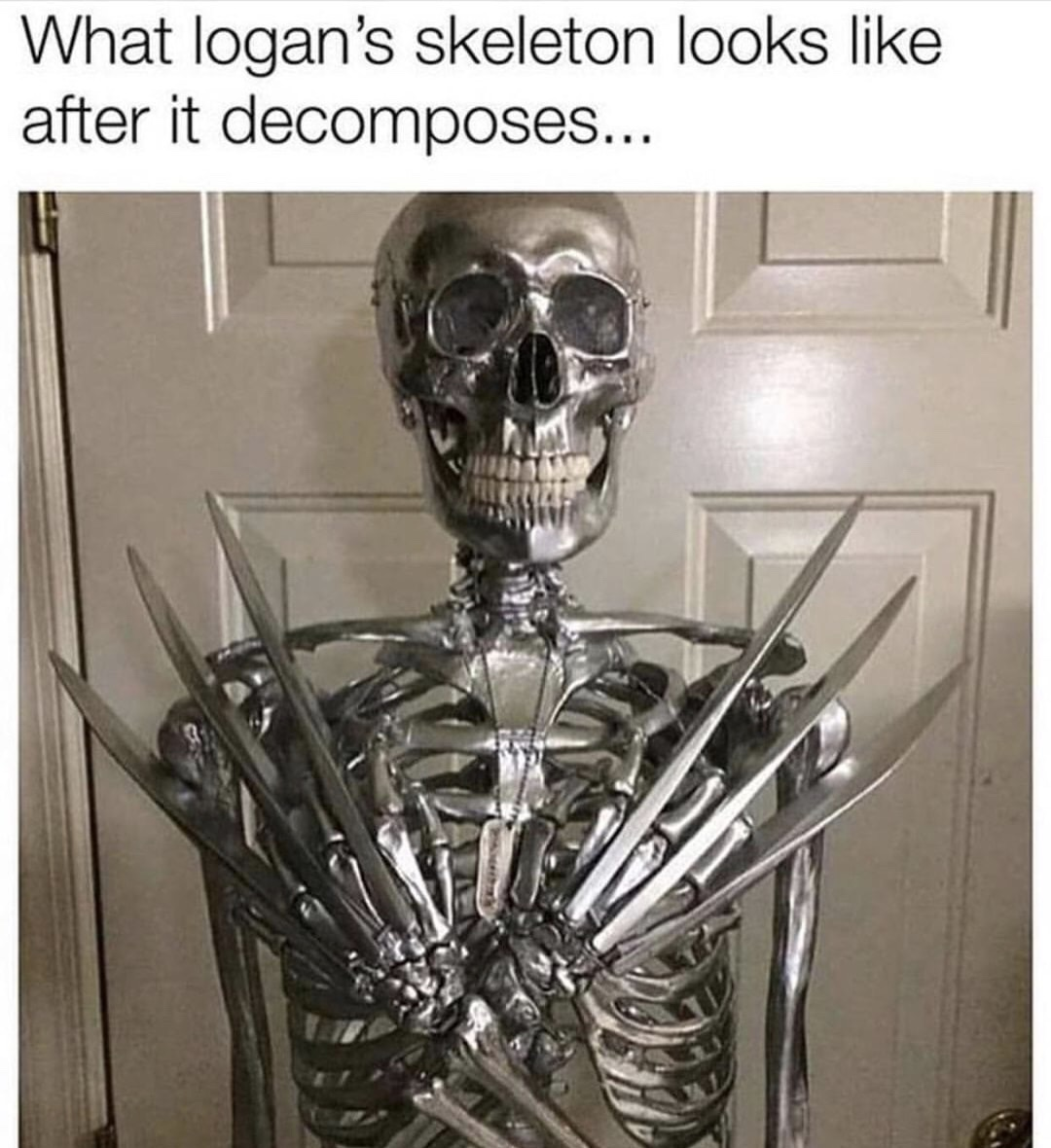 I mean the dudes not wrong   Spooky memes, Halloween memes ...  Skeleton Laughing Meme