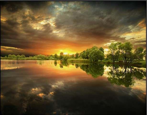 6 - 12 Nature Pics