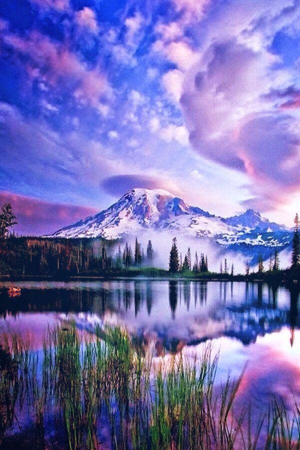 10 - 12 Nature Pics