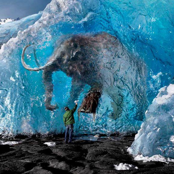 25 Amazing Pictures Gallery eBaums World