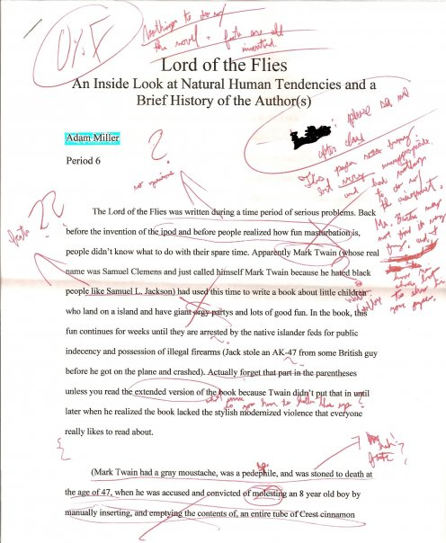 Best essay ever written lord flies golding