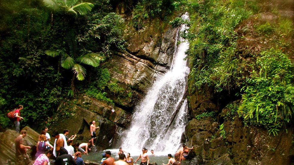 15 - Wanna see the Amazon?  Just go to El Yunque National Forrest, Puerto Rico.