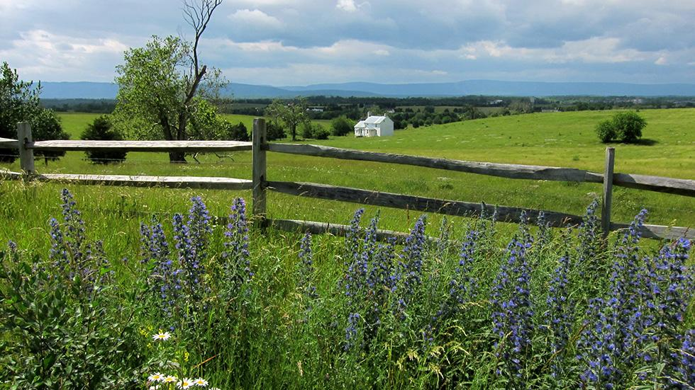 17 - Wanna see the English countryside? Just go to Shenandoah Valley, VA.