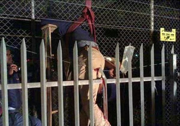 Prison Fence Graphic thief impaledfence graphic - gallery | ebaum's world