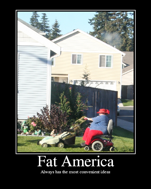 Fat America Picture Ebaum S World