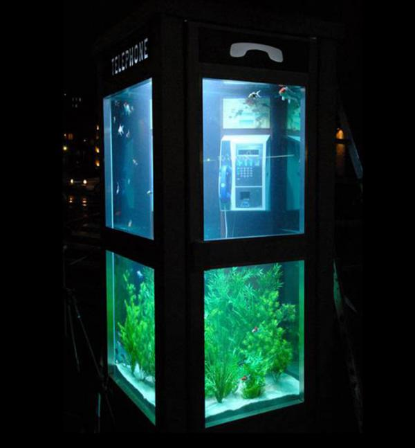 Cool fish tank picture ebaum 39 s world for Awesome fish tanks