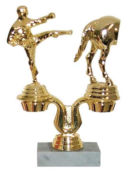 Ass Trophy 76