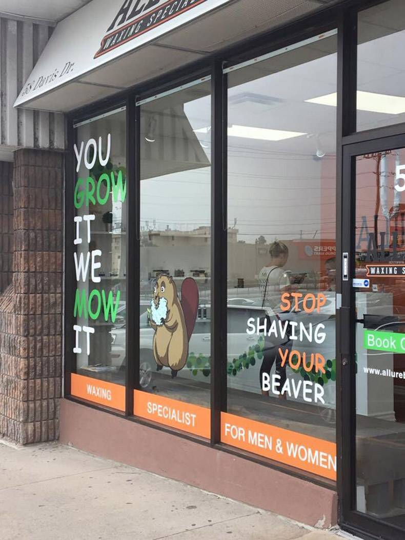 12 - Get your beaver trimmed shop