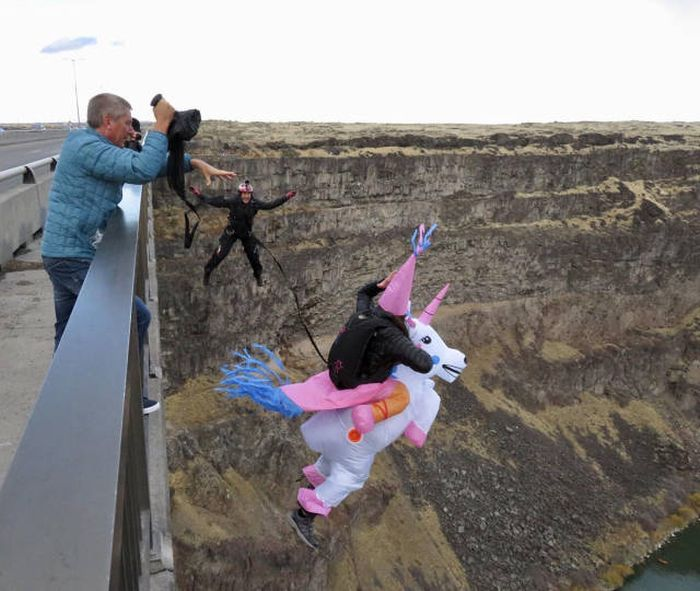 16 - Nonchalant Compilation of 32 Remarkable Images