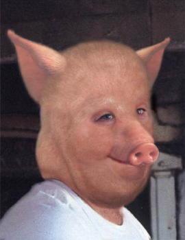 Свиной член фото 9 фотография