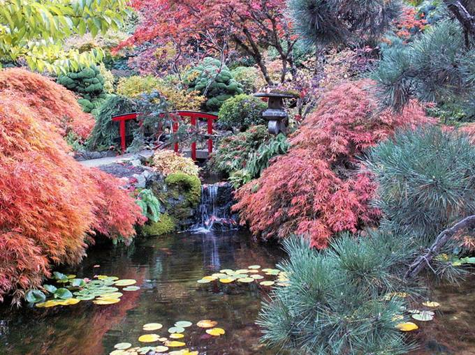 Fall at butchart gardens victoria bc canada gallery ebaums 7 fall at butchart gardens victoria bc canada thecheapjerseys Image collections