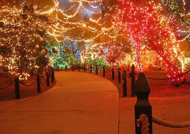 25   Beautiful Christmas Lights