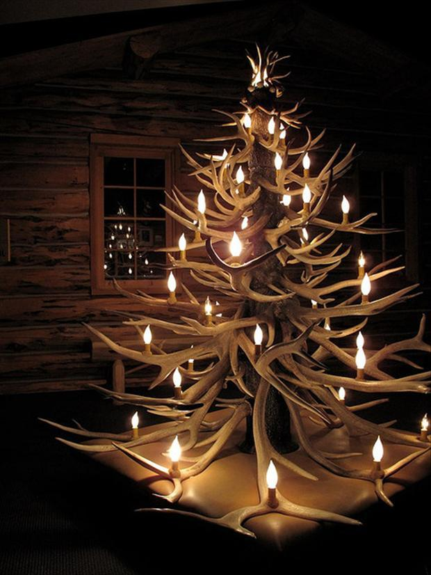 1   Unusual Christmas Trees