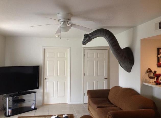 Weird Home Decor Ideas