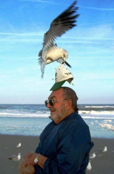 4 - The Most Important WTF Beach Photos Ever Taken