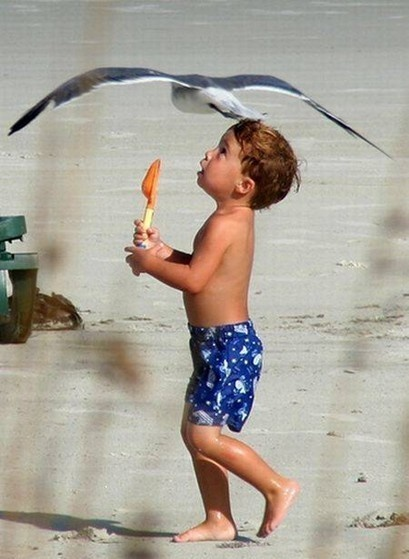 5 - The Most Important WTF Beach Photos Ever Taken