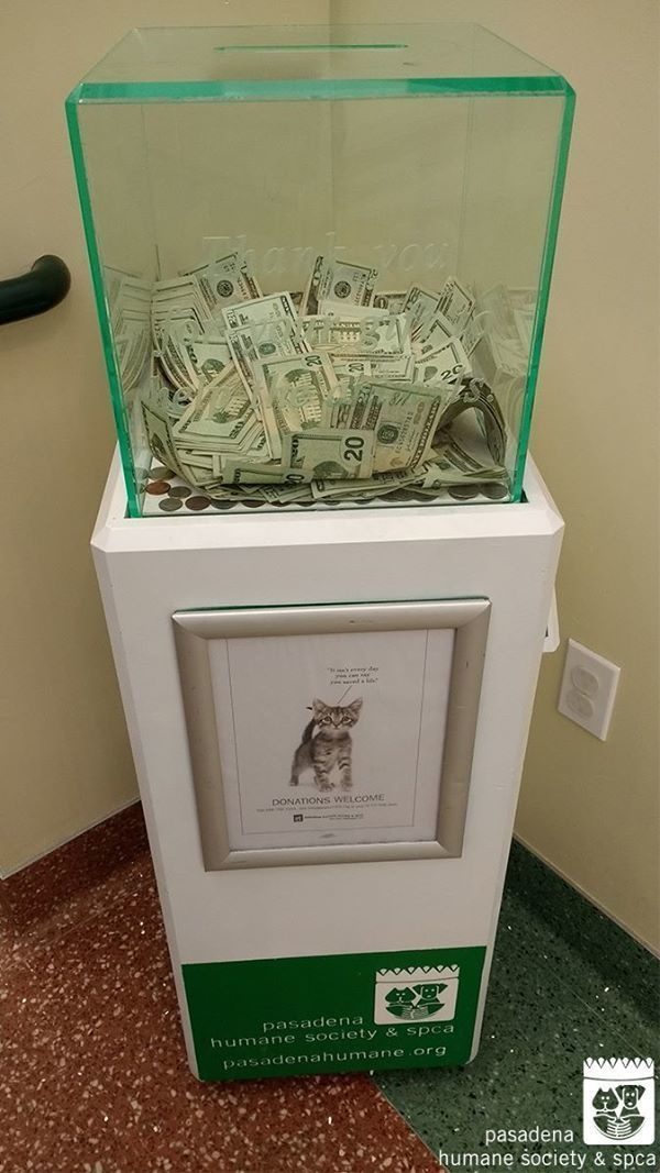 1 - A very generous stranger anonymously donated $8,000 to an animal shelter's donation box.