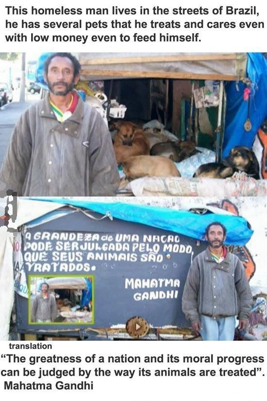 3 - A homeless man who treats and cares for several homeless pets.
