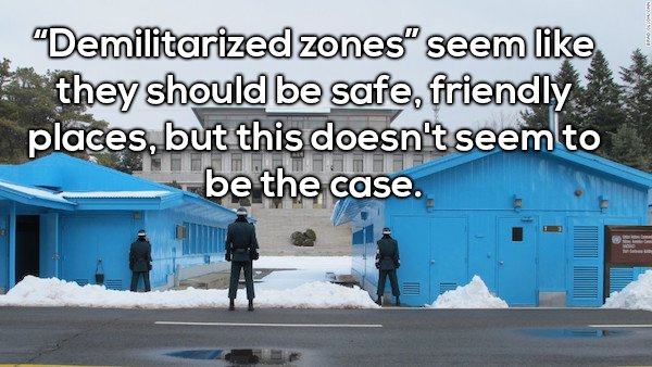 6 - Shower thought about how demilitarized zones are never safe friendly places like they sound.