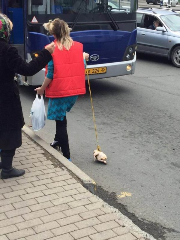 7 - 38 WTF pics from Russia