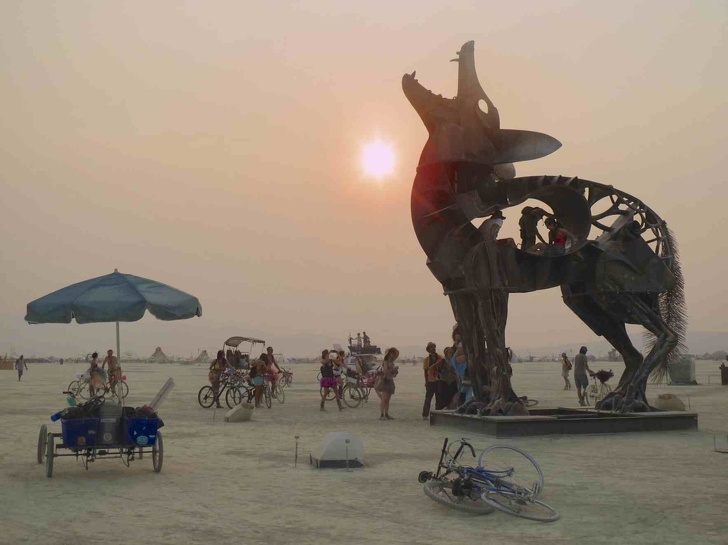 8 - A coyote statue at the Burning Man Festival, 2013
