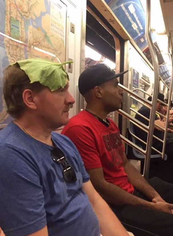 18 - 30 weird sights spotted on the subway