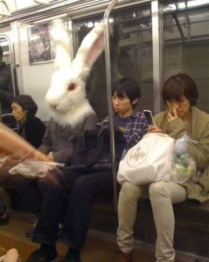14 - 28 bizarre things seen on the subway