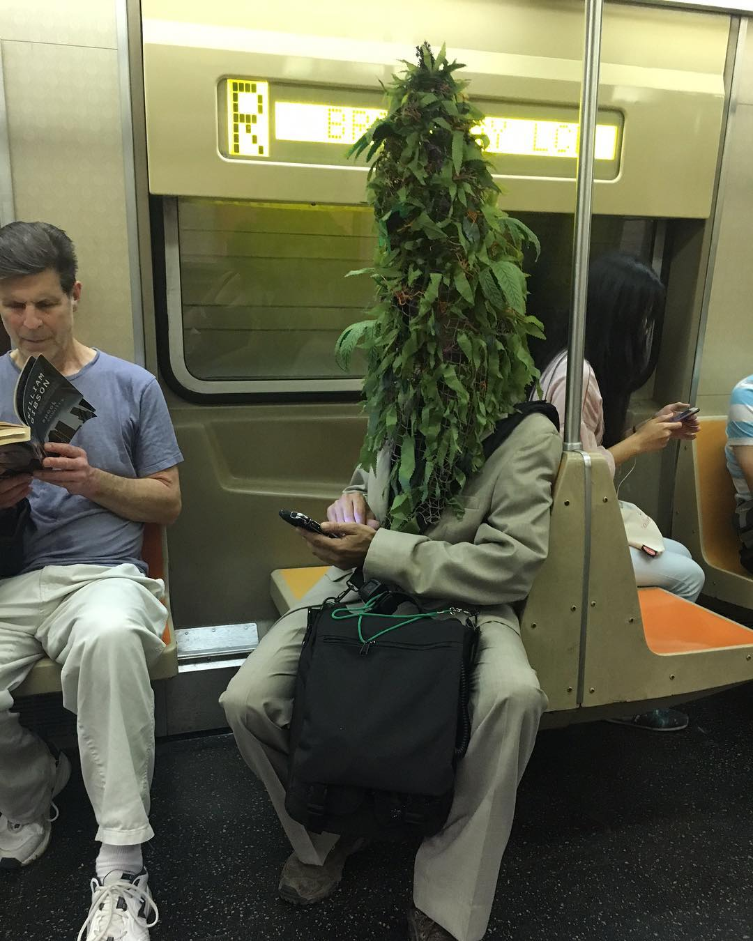 20 - 28 bizarre things seen on the subway