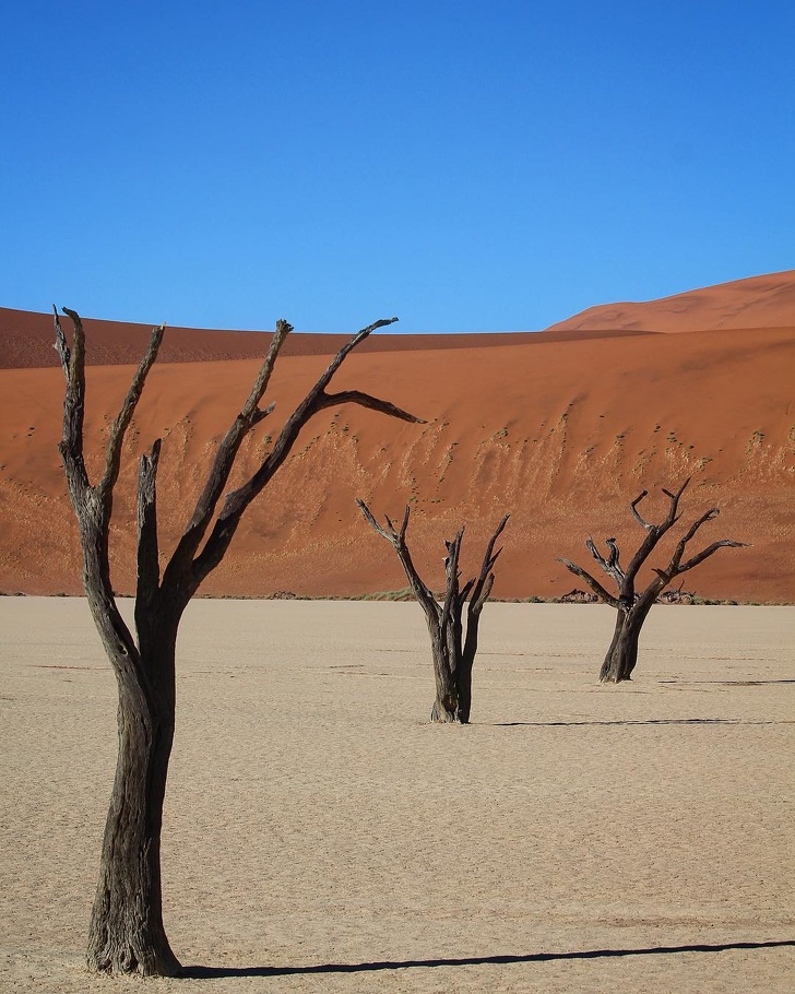 22 - The perfect desert of Dead Vlei, Namibia.