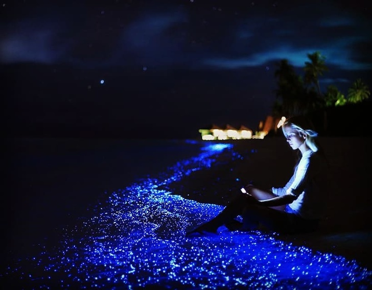 23 - Vaadhoo Island in the Maldives is surrounded by a 'sea of stars' that glows thanks to a certain type of phytoplankton.