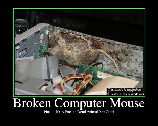 funny broken computer broken  puter mouse   picture ebaum s world