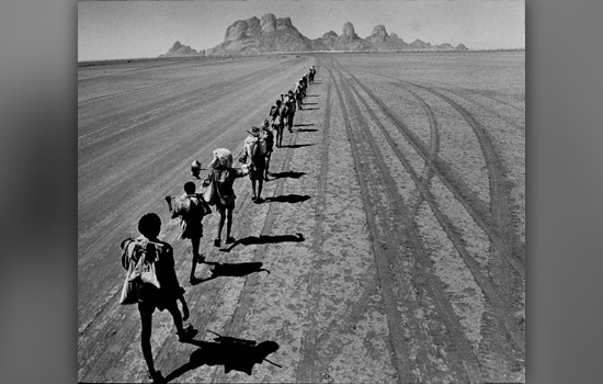 Pulitzer Prize Photos