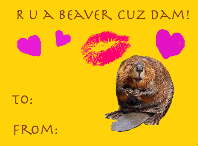 1   64 Valentineu0027s Day Cards, Signs And Memes