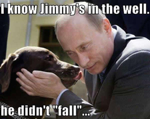 84550702 22 putin memes that are illegal in russia funny gallery