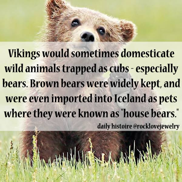 27 Interesting Facts About The Viking Lifestyle - Wow Gallery ...