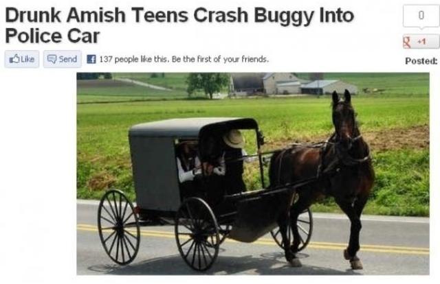 38 - Drunk Amish teens crash buggy into police car in Pennsylvania. Pennsylvania