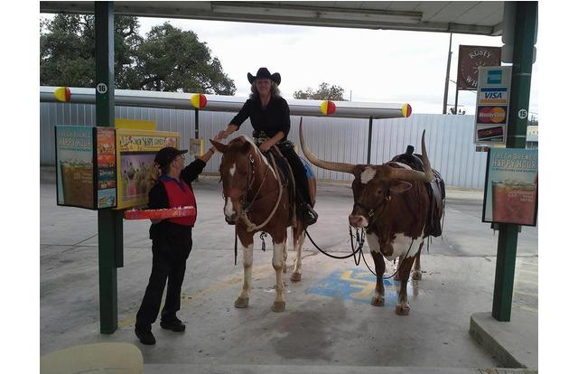 43 - Man riding a horse to a drive-thru in Texas. Texas