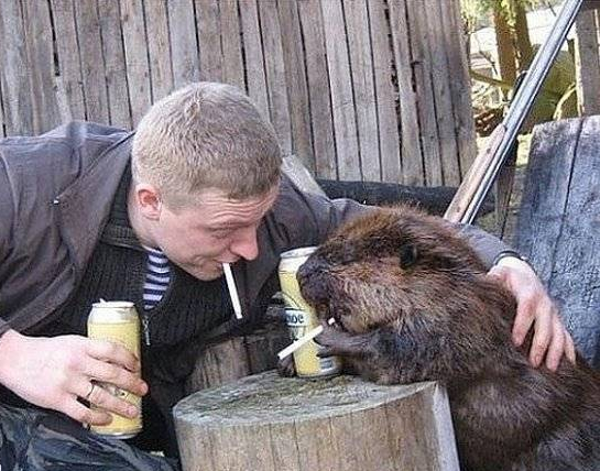 "38 - 53 Pictures That Scream ""Only In Russia"""