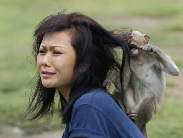 1 - 22 Women Who Ignite Unexplainable Hate In Animals