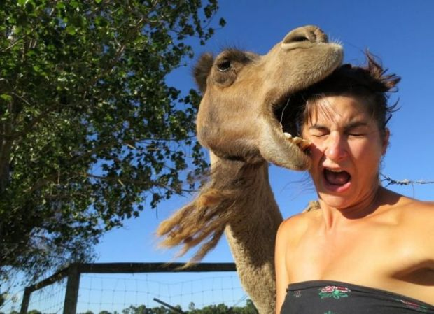 12 - 22 Women Who Ignite Unexplainable Hate In Animals