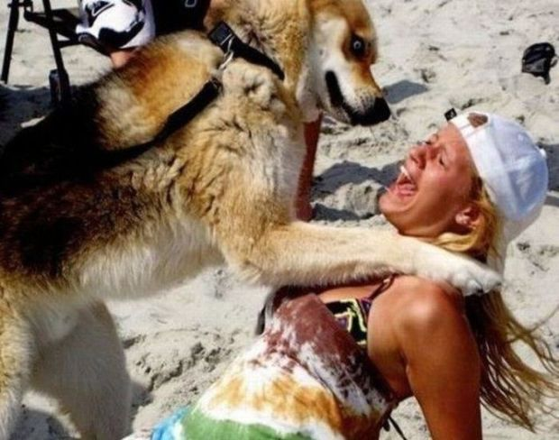 16 - 22 Women Who Ignite Unexplainable Hate In Animals