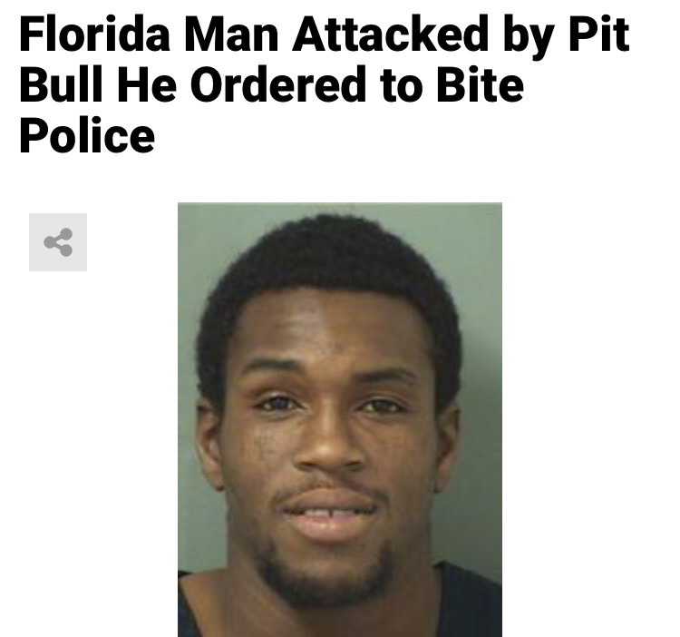 12 - Massive Tale Of The Fabled Florida Man's Exploits