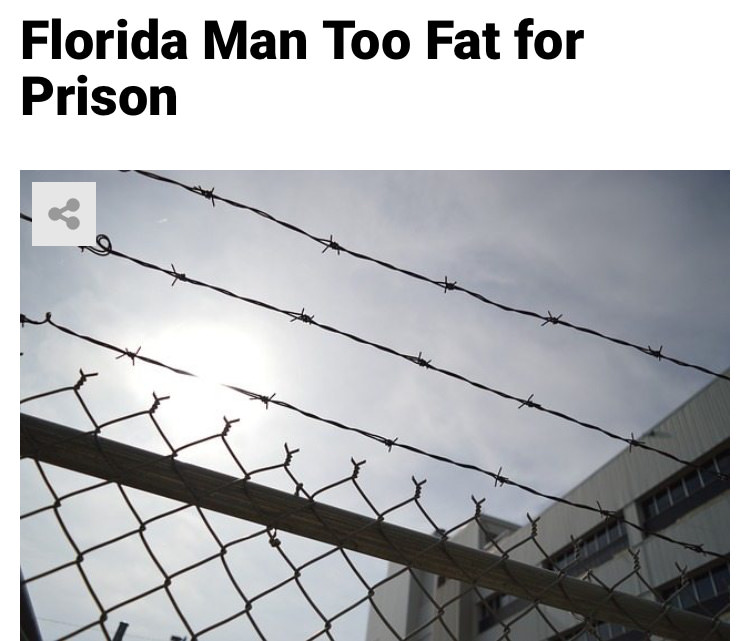 23 - Massive Tale Of The Fabled Florida Man's Exploits