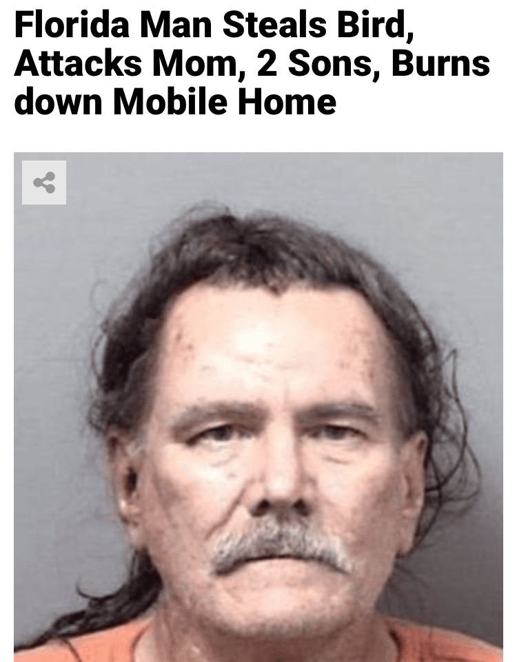 31 - Massive Tale Of The Fabled Florida Man's Exploits