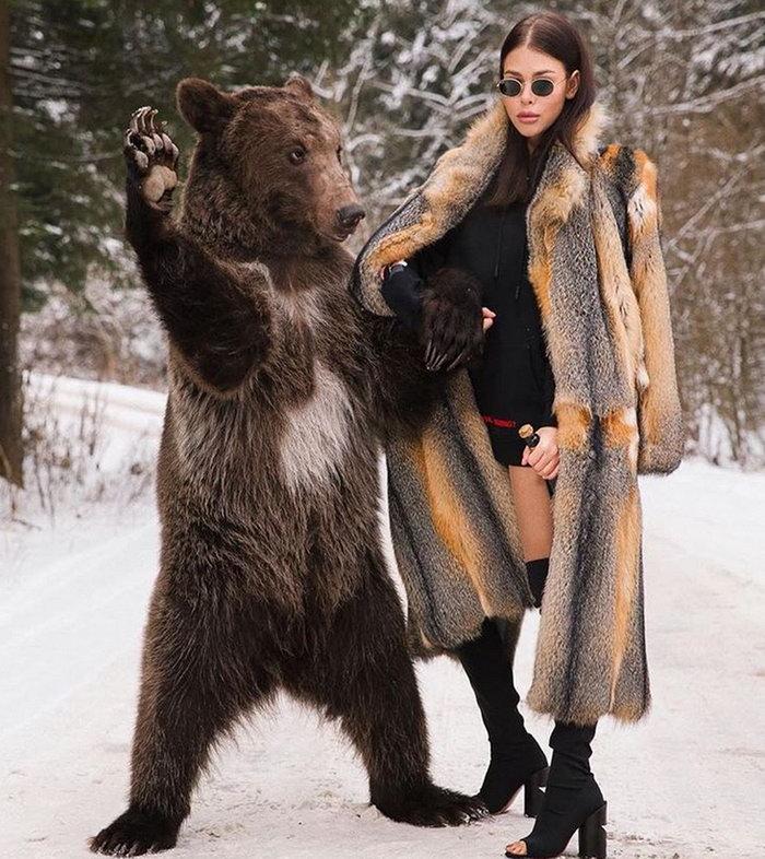 1 - Obligatory bear...